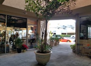 laguna beach shopping center laguna beach property manager
